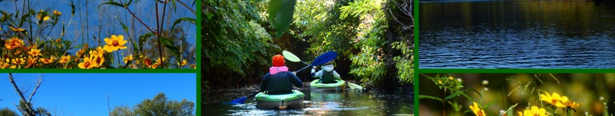 Kayak Tours/Rentals/Repairs and More/25B Church Street/Mount Holly/New Jersey